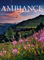 Ambiance Cover 02 2017