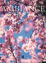 Ambiance Cover 07 2018